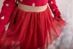 Tutu skirt red/gold, 104-146